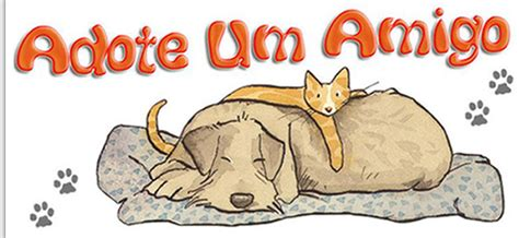 E Para Adocao From The Adoptable Pets Photo Pool by 1 170 Feira Para Ado 231 227 O De C 227 Es E Gatos Adote Um Amigo