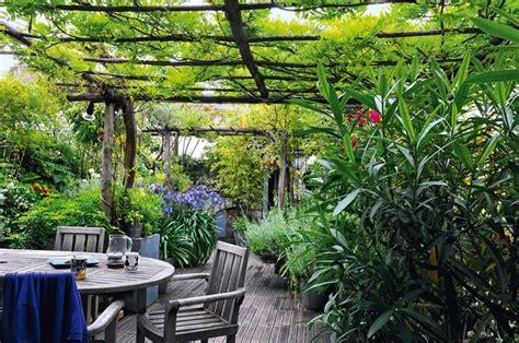 abri terrasse 2256 pergola avec vigne vigne vierge st 233 rile actinidia au