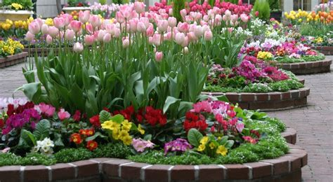 how to design a flower bed how to design a flower bed