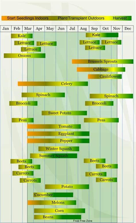 zone 9 vegetables zone 8 vegetable garden planting calendar