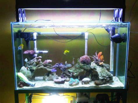 Filter Pembersih Akuarium Jual Akuarium Kaca Custom Design Dengan Kualitas Terjamin