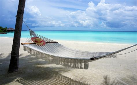 beach maldives island nature sand hammocks sea