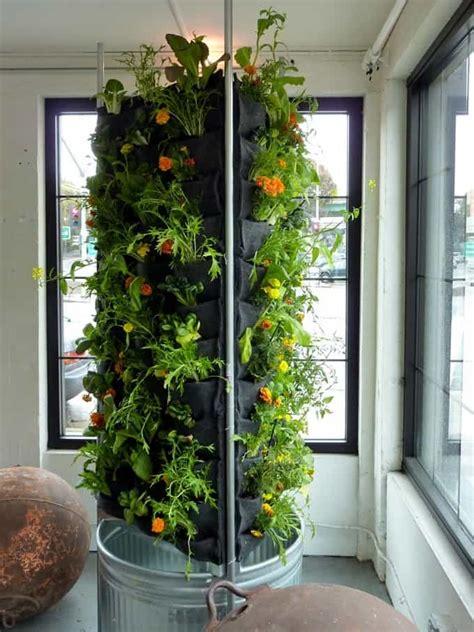 vegetable garden design ideas  green living