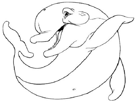coloring page of bottlenose dolphin free printable dolphin coloring pages for kids