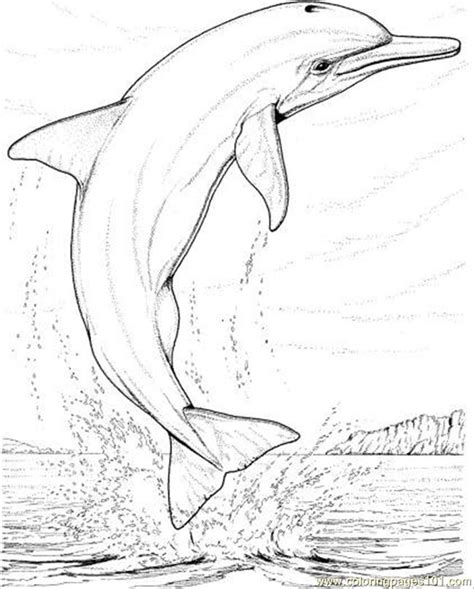 Coloring Pages Dolphins Jumping | dolphin jump coloring page coloring page free dolphin