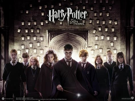 harry potter and the order of the series 5 harry potter expelliarmus