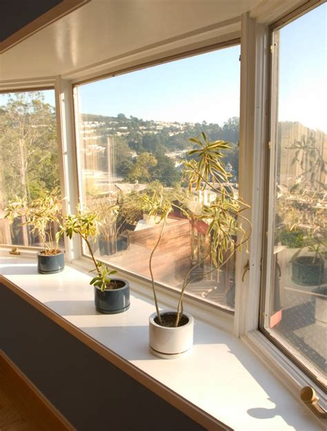 plants in bay window at kevin warnock