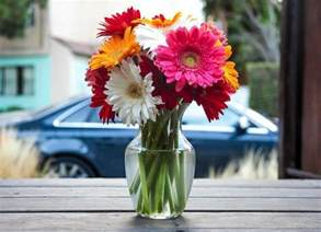 How To Preserve Flowers In A Vase How To Keep Cut Flowers Fresh The Old Farmer S Almanac