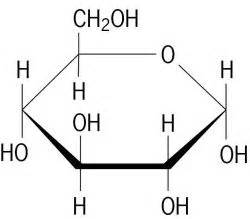 d glucose article about d glucose by the free dictionary
