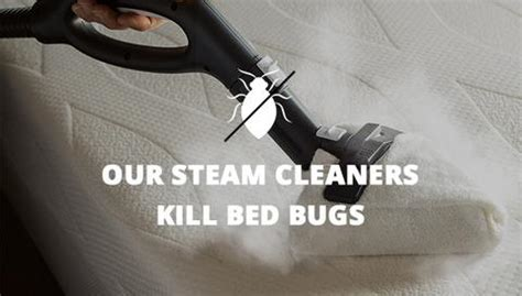 killing bed bugs with steam brio 500cc steam cleaner steam cleaners commercial