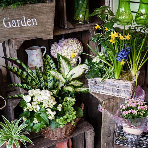 Cottage Garden Flower Shop The Flower Corner The Cottage Garden Flower Shop Dunstable