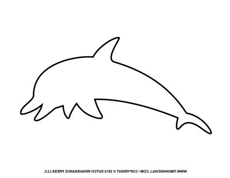 dolphin outline clipart best dolphin coloring pages to print free dolphin clipart