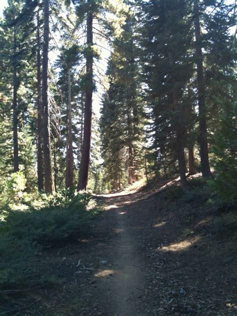 sugar pine trail a small town point sierras interregnum tahoma ca money doesn t talk it
