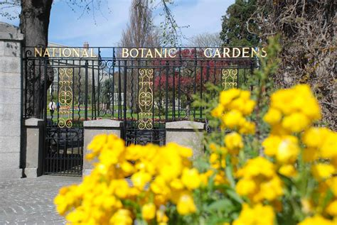 Glasnevin Botanic Gardens National Botanic Garden Glasnevin Dublin The Biking Gardener