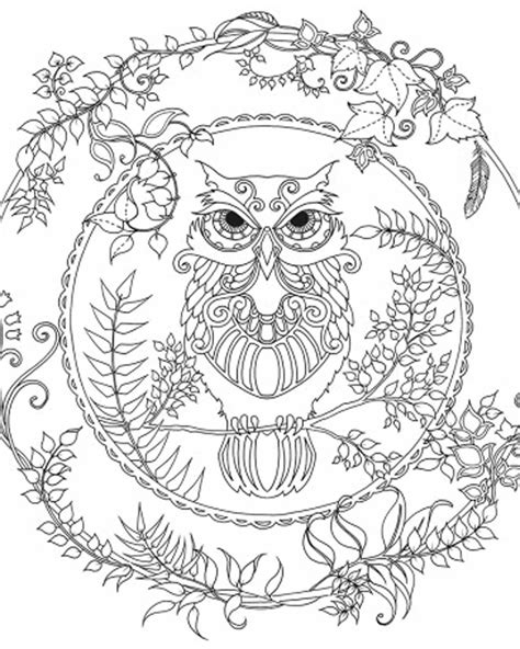 owl mandala coloring pages for adults brightbird free coloring pages stuff