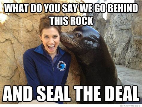 Dirty Sexy Memes - pick up line seal meme weknowmemes