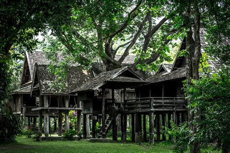 free images tree forest architecture house flower