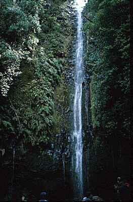 alan walker waterfall madeira photo page 5 scenery
