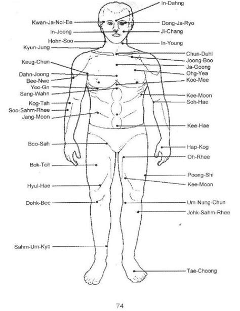diagram of pressure points on the human free printable reflexology charts to borders foot