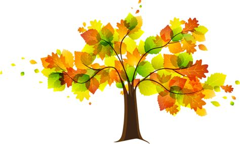 clipart autunno autumn fall leaves clipart free clipart images 4
