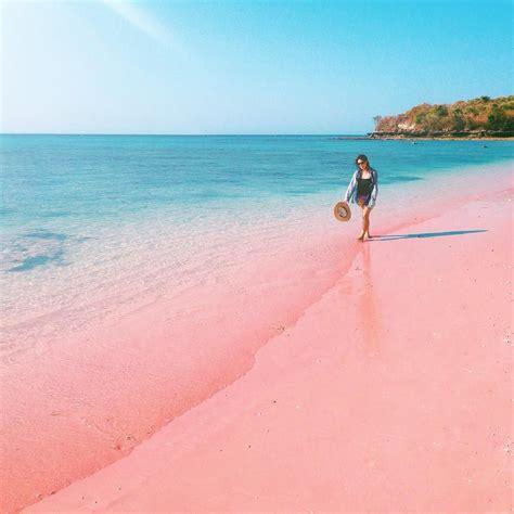 beaches with pink sand pink beach lombok bali beaches pinterest pink beach