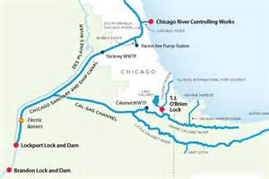 Chicago Waterways Map by Despite Dna Evidence No Asian Carp In Chicago River Says