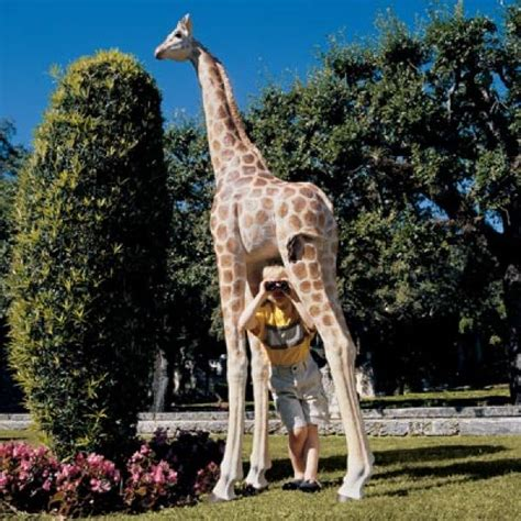 statue da giardino in resina pisolo via dal giardino arrivano le giraffe galleria