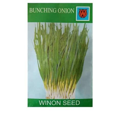 Bibit Bawang Daun Dari Biji jual benih daun bawang kecil 3ml winon seed bibit
