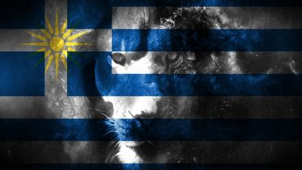 blue white flags greece lions macedonia greek coulor