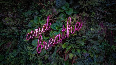 breathe neon sign  wallpapers hd wallpapers id