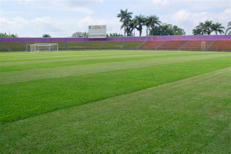 Jual Rockwool Blitar jual rumput lapangan sepak bola harga murah bandung oleh