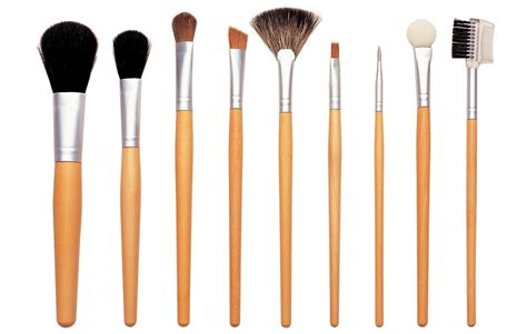 makeup brush pass but not with flying colors witch hazel
