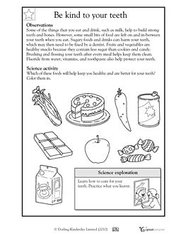12 best images of dental worksheets for school 2nd grade