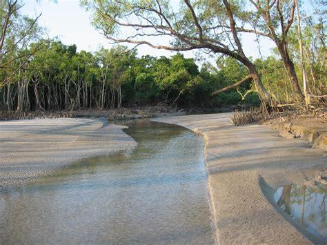 sundarbantours travel to nature with care tourism in bangladesh sundarbans