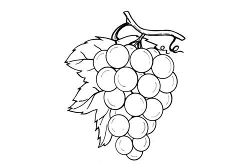 imagenes de uvas a color para imprimir dibujo uvas para colorear e imprimir imagui
