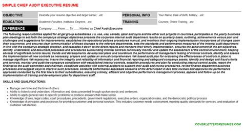 Cover Letter Chief Audit Executive by Chief Audit Executive Resume Template