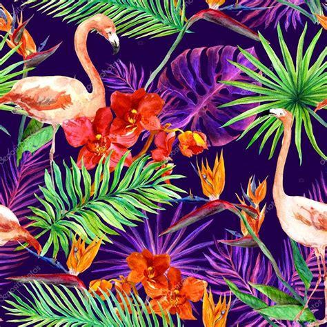 fiori senza luce foglie di esotici tropicali fiori di orchidea luce al