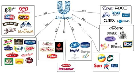 layout strategy of unilever brands the unilever corporation own unilever