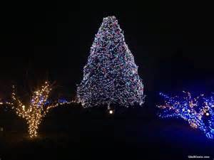 toledo zoo lights before hours toledo zoo lights revisited inacents