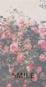 pink lock screen wallpapers wallpapersafari