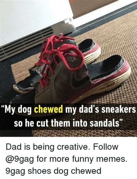 Meme Shoes - my dog chewed my dad s sneakers so he cut them into