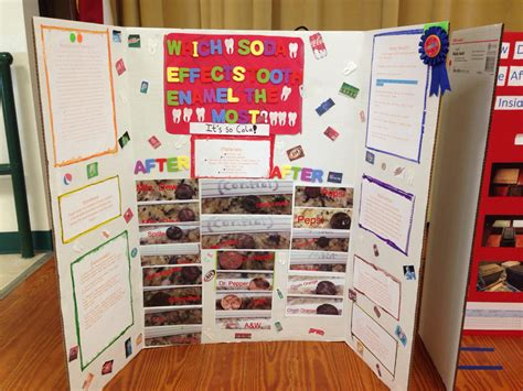 Science Fair Project Ideas For 8th Grade Girls Fifth