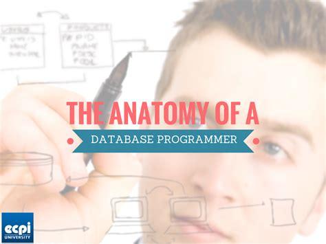 Database Programmer the anatomy of a database programmer