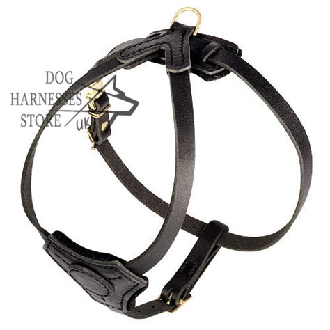 pug harness uk small harness for pug padded harness for pug walking 163 45 00