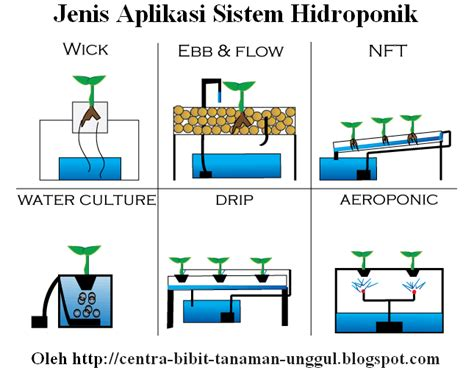 Tips Hidroponik Alat Hidroponik panduan dasar budidaya tanaman hidroponik lengkap dengan