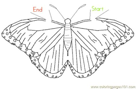 printable insect mazes butterflymaze coloring page free butterfly coloring