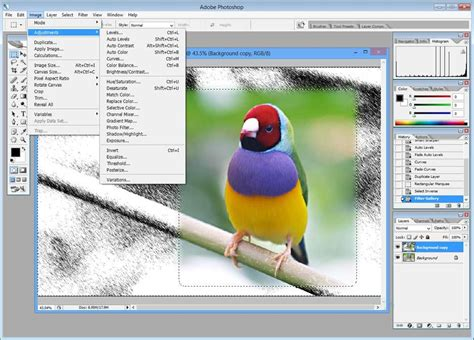 design expert 10 trial version free download adobe photoshop cs4 extended free trial download
