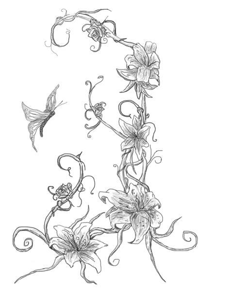 Find On Vine Butterfly On Vine By Webkrovler On Deviantart