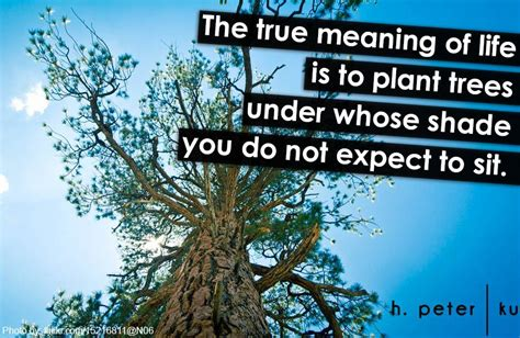 true meaning  life   plant trees