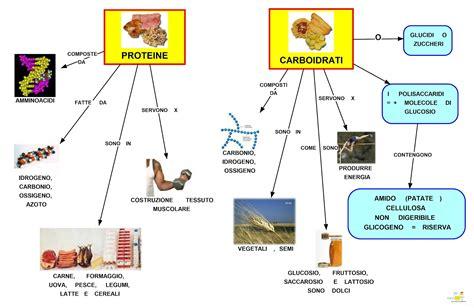 alimenti proteine mapper proteine e carboidrati
